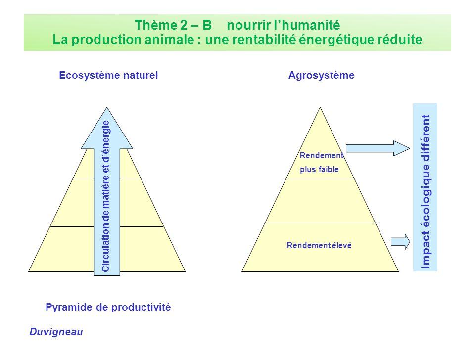 Pyramide de productivité