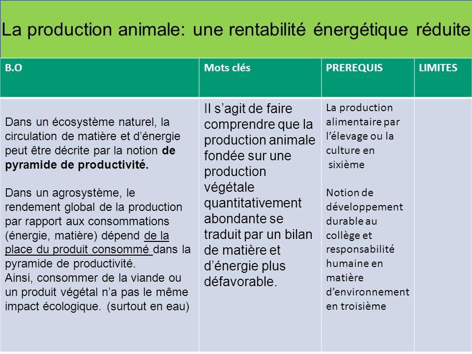 La production animale: une rentabilité énergétique réduite