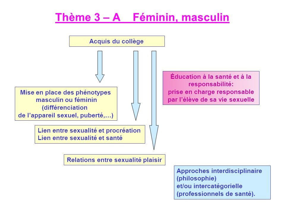 Thème 3 – A Féminin, masculin