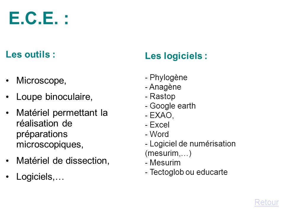 E.C.E. : Les outils : Les logiciels : Microscope, Loupe binoculaire,