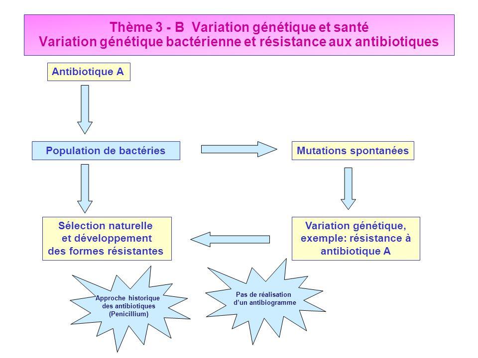 Thème 3 - B Variation génétique et santé Variation génétique bactérienne et résistance aux antibiotiques