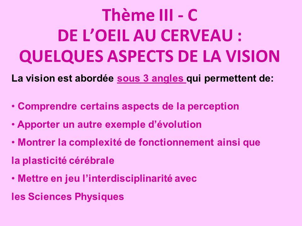Thème III - C DE L'OEIL AU CERVEAU : QUELQUES ASPECTS DE LA VISION