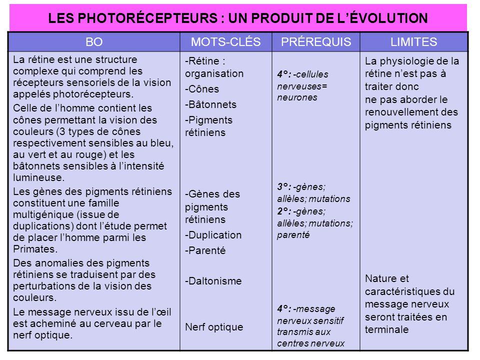 LES PHOTORÉCEPTEURS : UN PRODUIT DE L'ÉVOLUTION