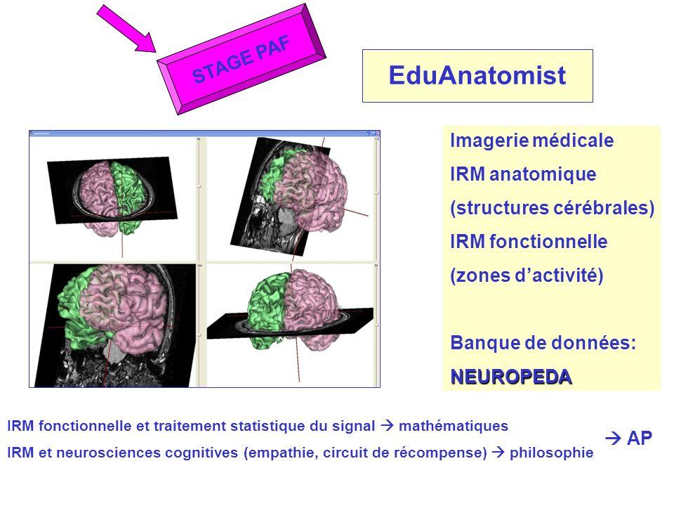 EduAnatomist STAGE PAF Imagerie médicale IRM anatomique