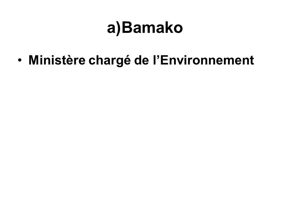 Bamako Ministère chargé de l'Environnement