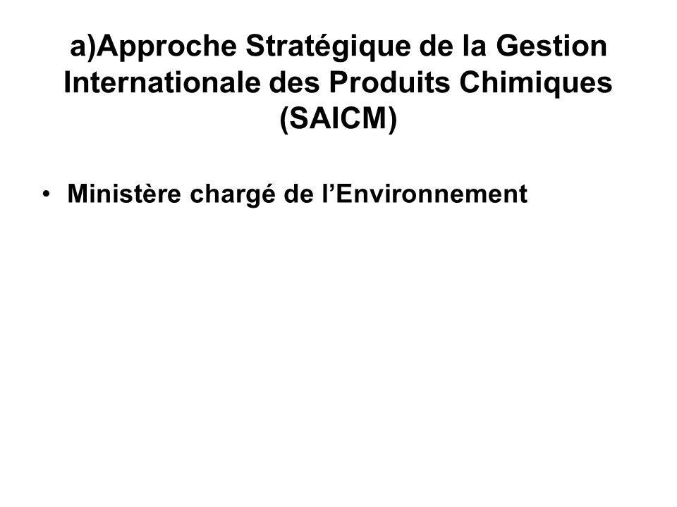 Approche Stratégique de la Gestion Internationale des Produits Chimiques (SAICM)
