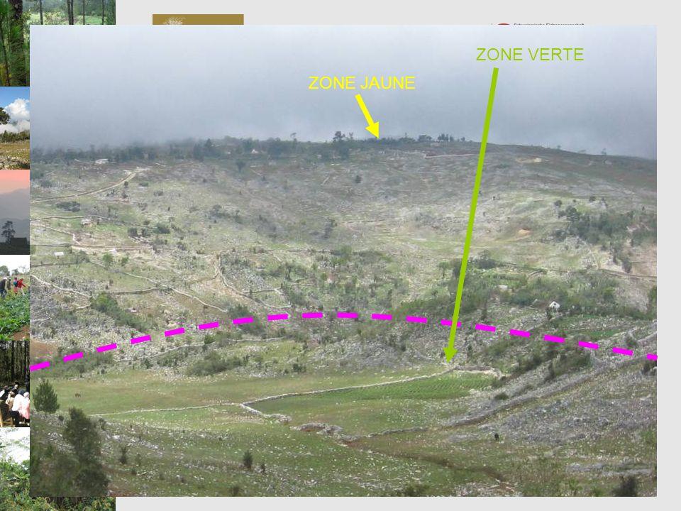 ZONE VERTE Programme de Préservation et de Valorisation de la Biodiversité PVB. ZONE JAUNE.