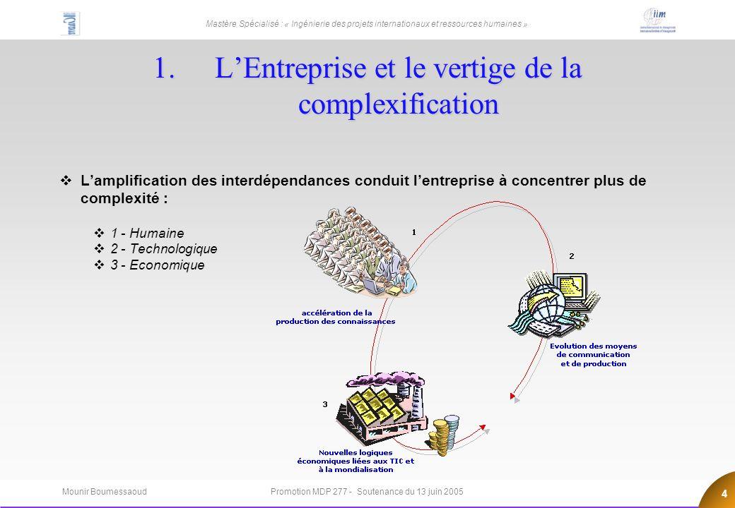 L'Entreprise et le vertige de la complexification