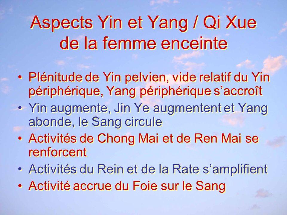 Aspects Yin et Yang / Qi Xue de la femme enceinte