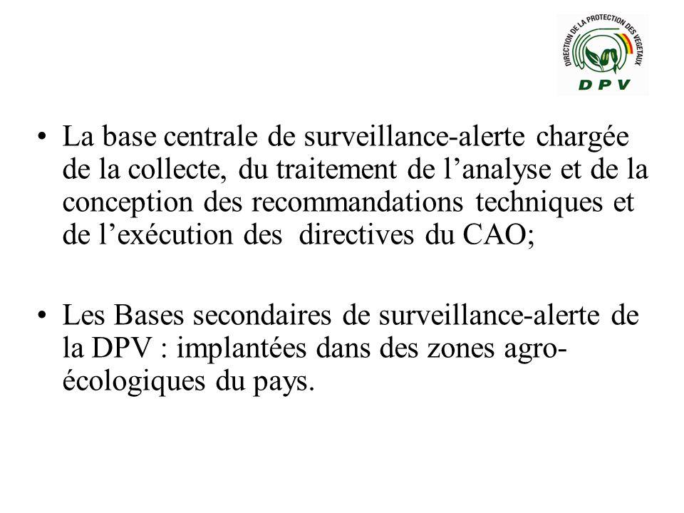 La base centrale de surveillance-alerte chargée de la collecte, du traitement de l'analyse et de la conception des recommandations techniques et de l'exécution des directives du CAO;