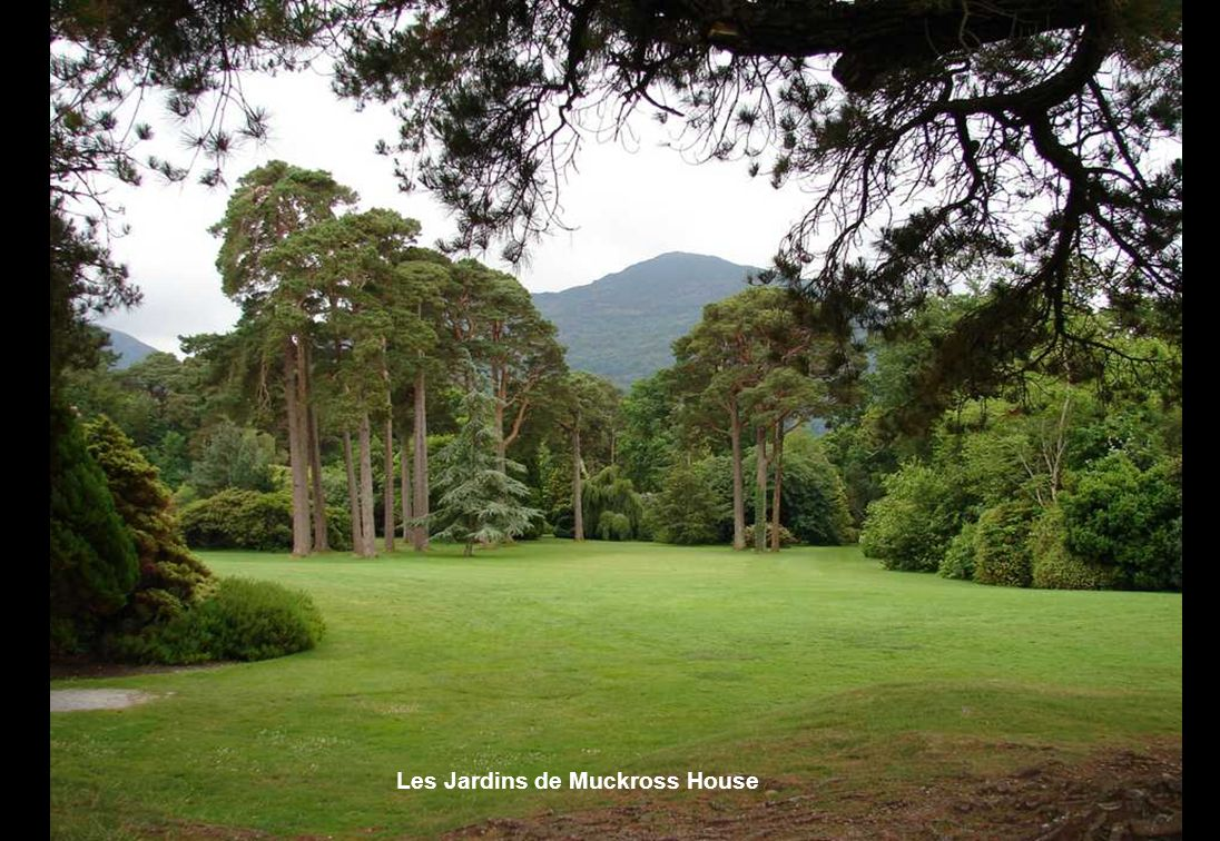 Les Jardins de Muckross House
