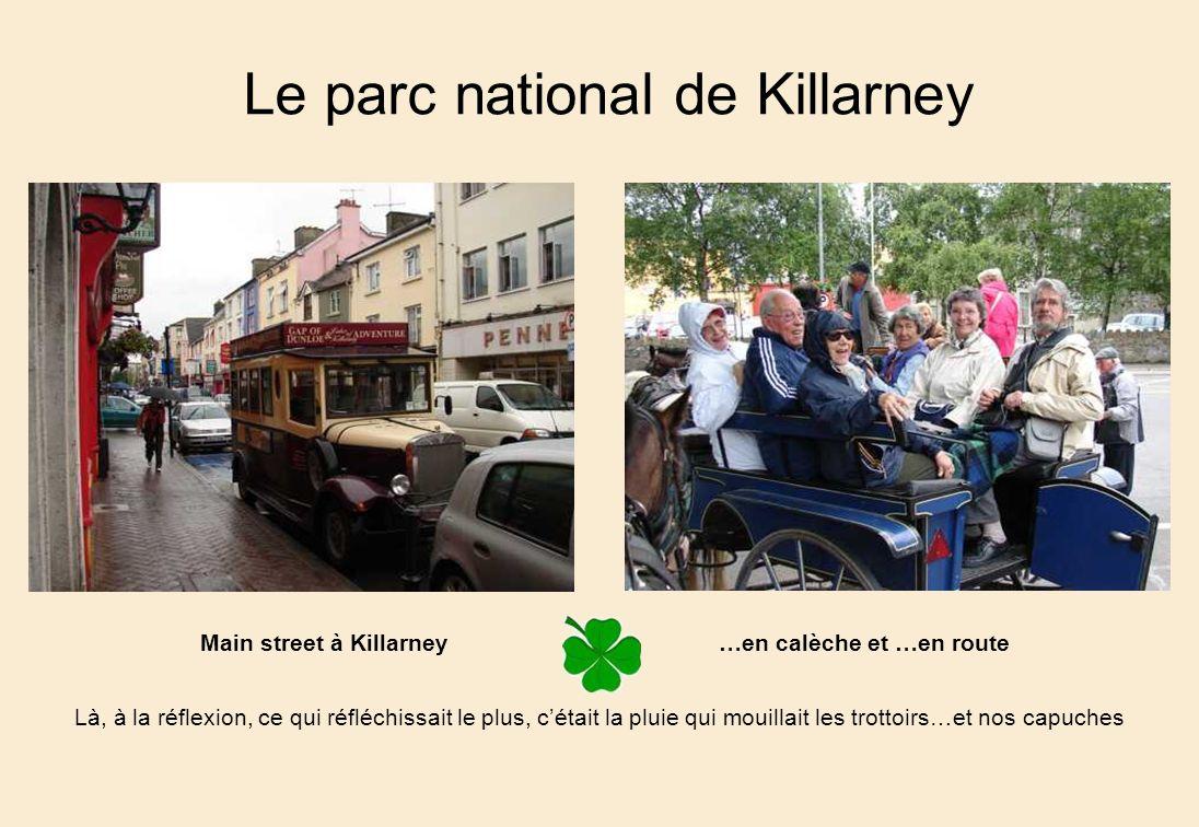 Main street à Killarney …en calèche et …en route