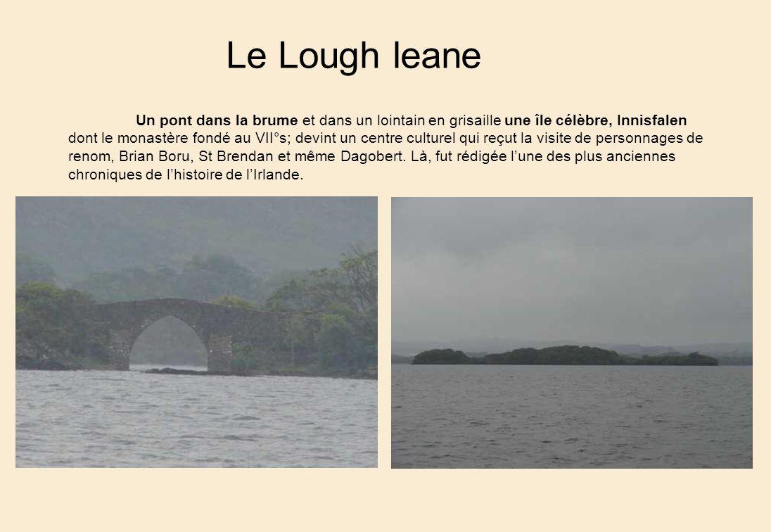 Le Lough leane