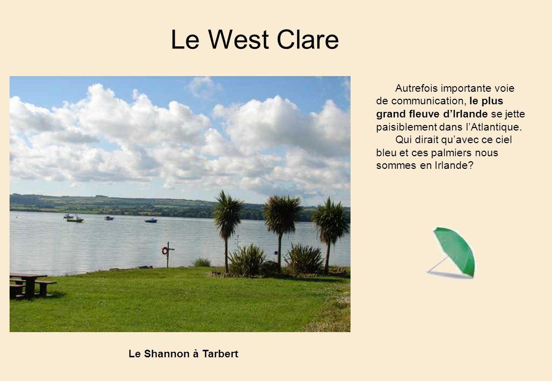 Le West Clare Autrefois importante voie de communication, le plus grand fleuve d'Irlande se jette paisiblement dans l'Atlantique.