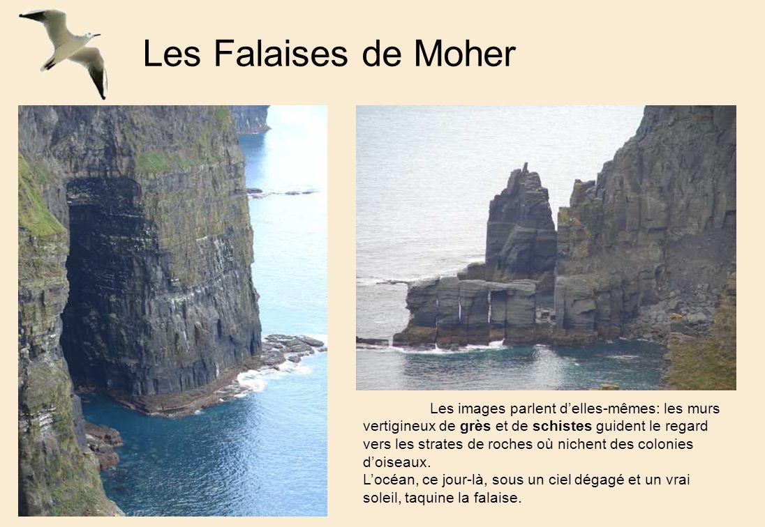 Les Falaises de Moher