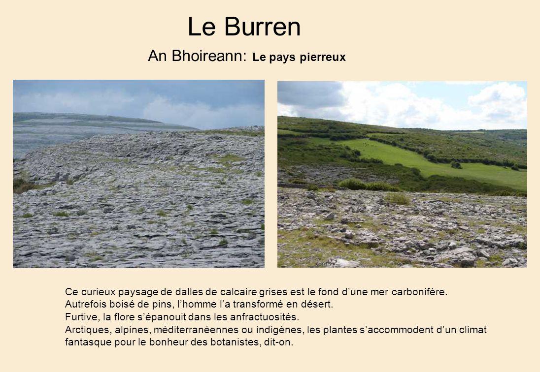 Le Burren An Bhoireann: Le pays pierreux