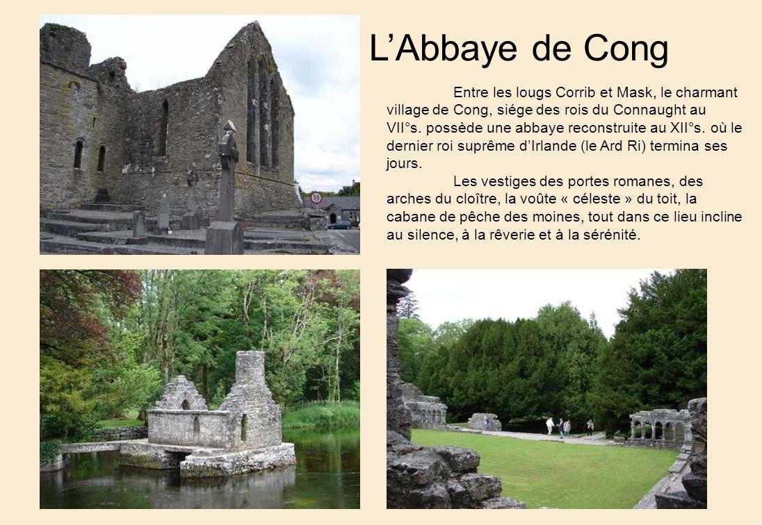 L'Abbaye de Cong