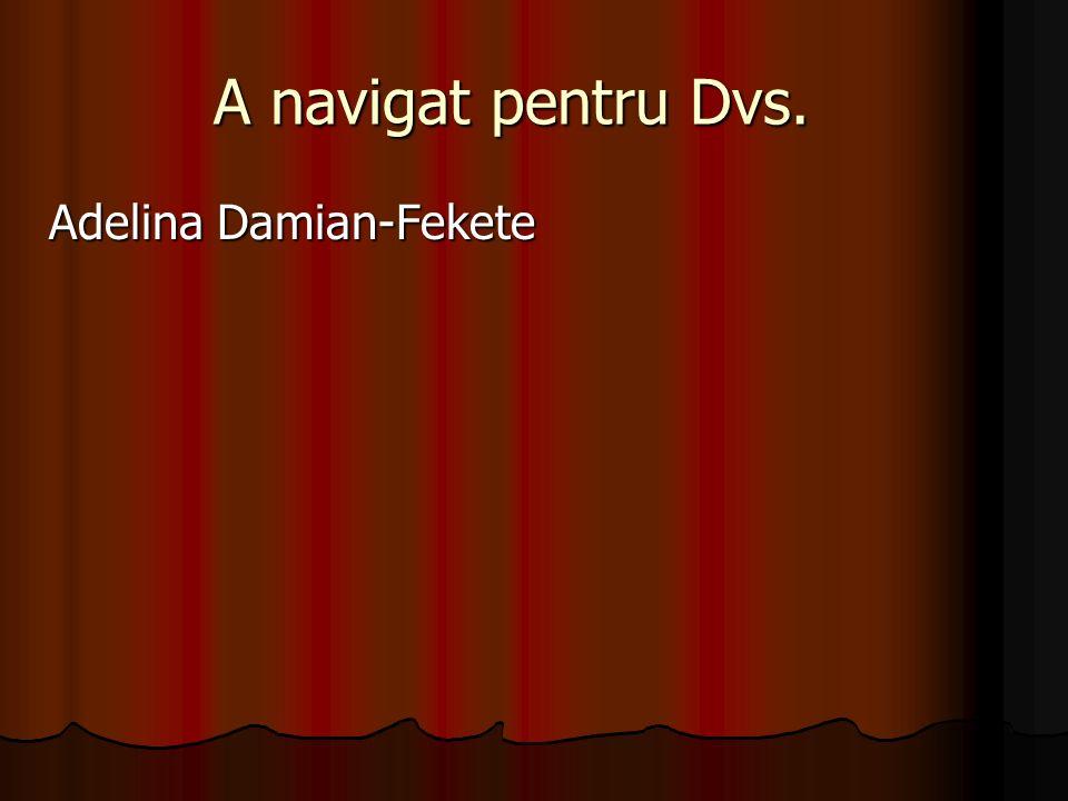 A navigat pentru Dvs. Adelina Damian-Fekete