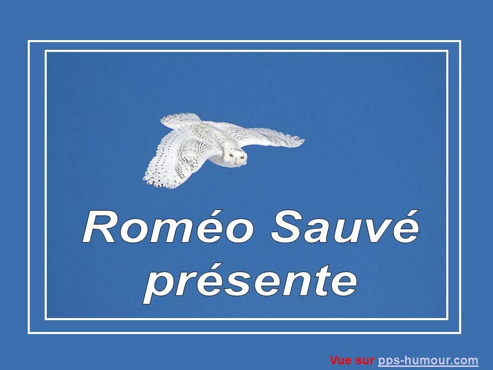 Roméo Sauvé présente Vue sur pps-humour.com