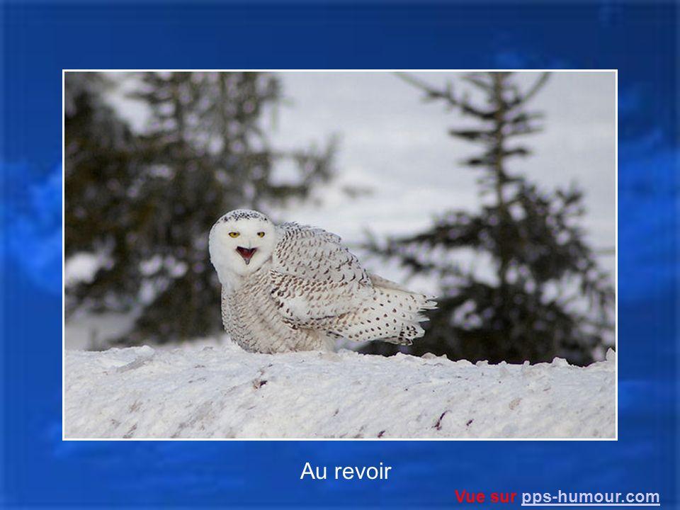Au revoir Vue sur pps-humour.com