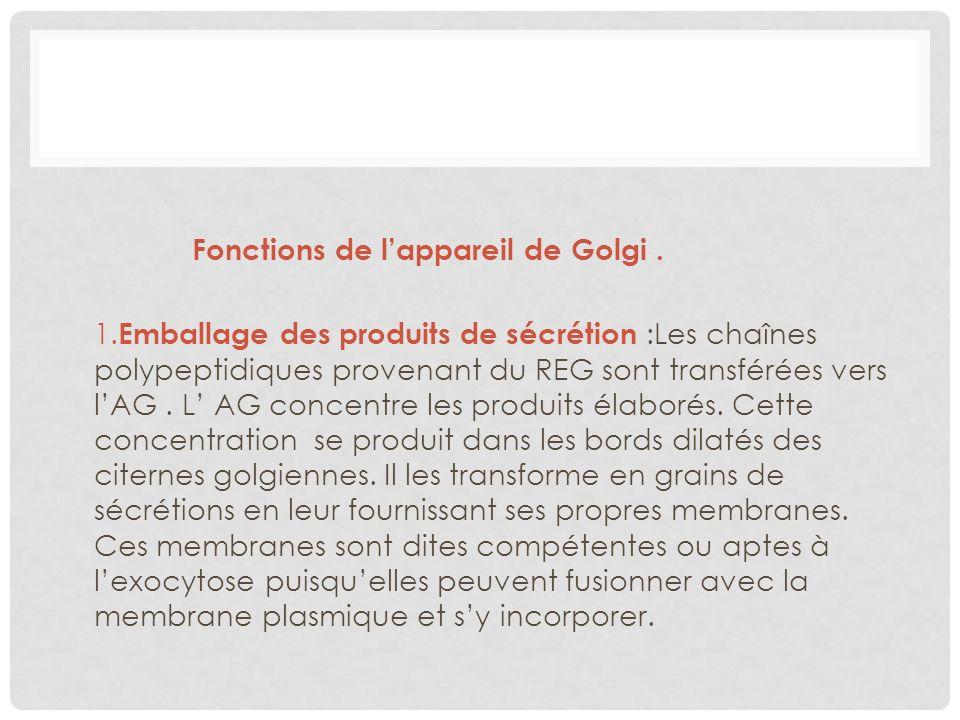 Fonctions de l'appareil de Golgi .