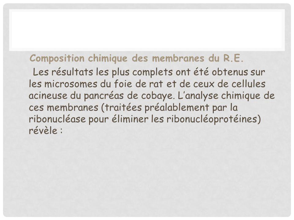 Composition chimique des membranes du R. E