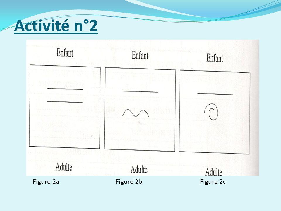 Activité n°2 Figure 2a Figure 2b Figure 2c