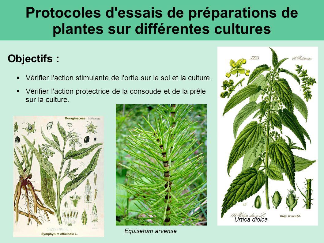 Protocoles d essais de préparations de plantes sur différentes cultures