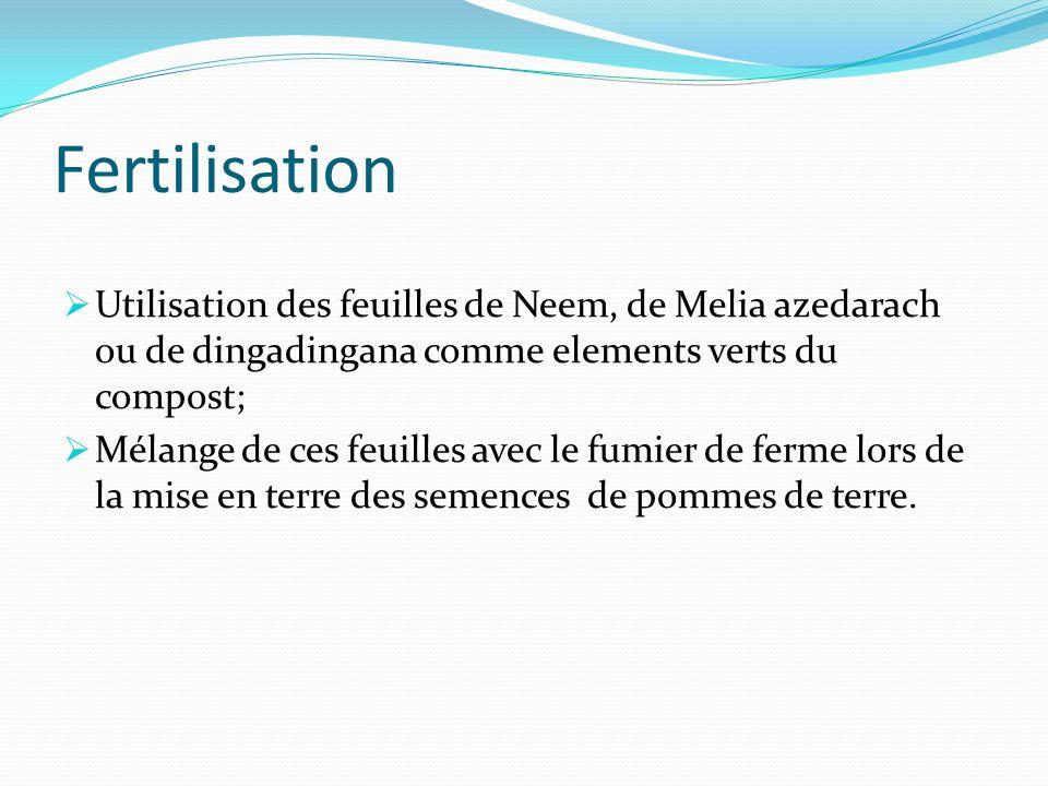 Fertilisation Utilisation des feuilles de Neem, de Melia azedarach ou de dingadingana comme elements verts du compost;