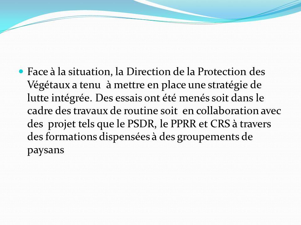 Face à la situation, la Direction de la Protection des Végétaux a tenu à mettre en place une stratégie de lutte intégrée.