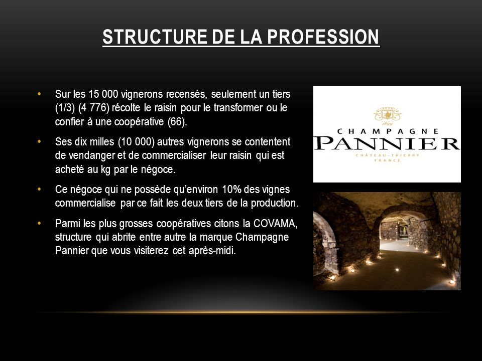 STRUCTURE DE LA PROFESSION