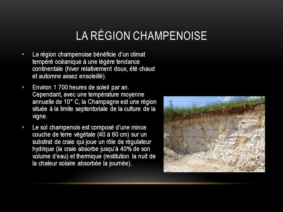 La région champenoise