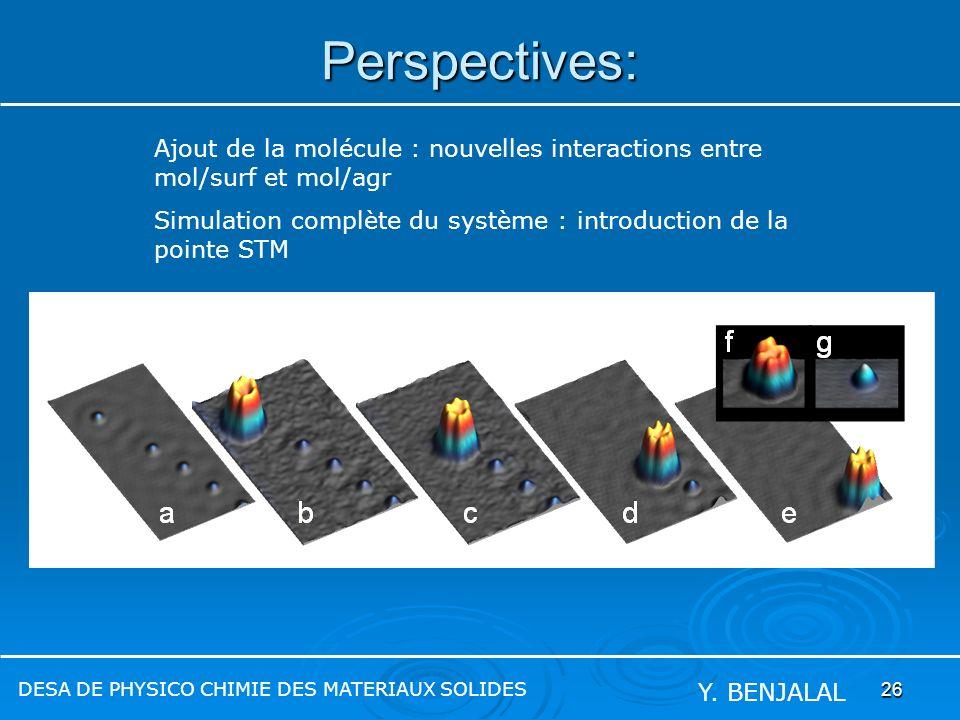 Perspectives: Ajout de la molécule : nouvelles interactions entre mol/surf et mol/agr.