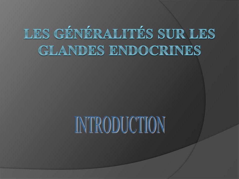 Les généralités sur les glandes endocrines