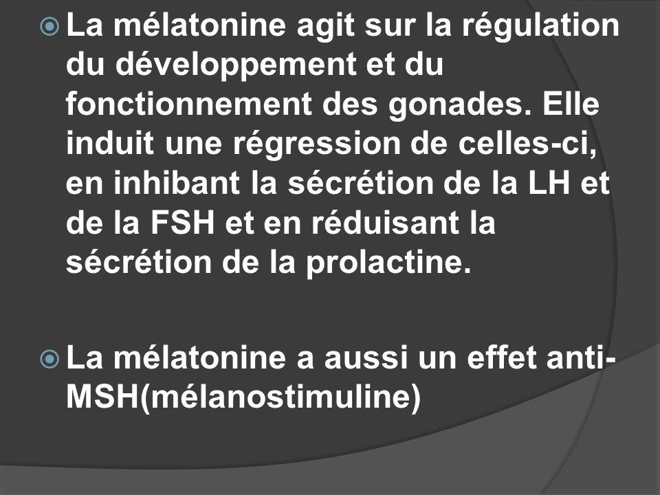La mélatonine agit sur la régulation du développement et du fonctionnement des gonades. Elle induit une régression de celles-ci, en inhibant la sécrétion de la LH et de la FSH et en réduisant la sécrétion de la prolactine.