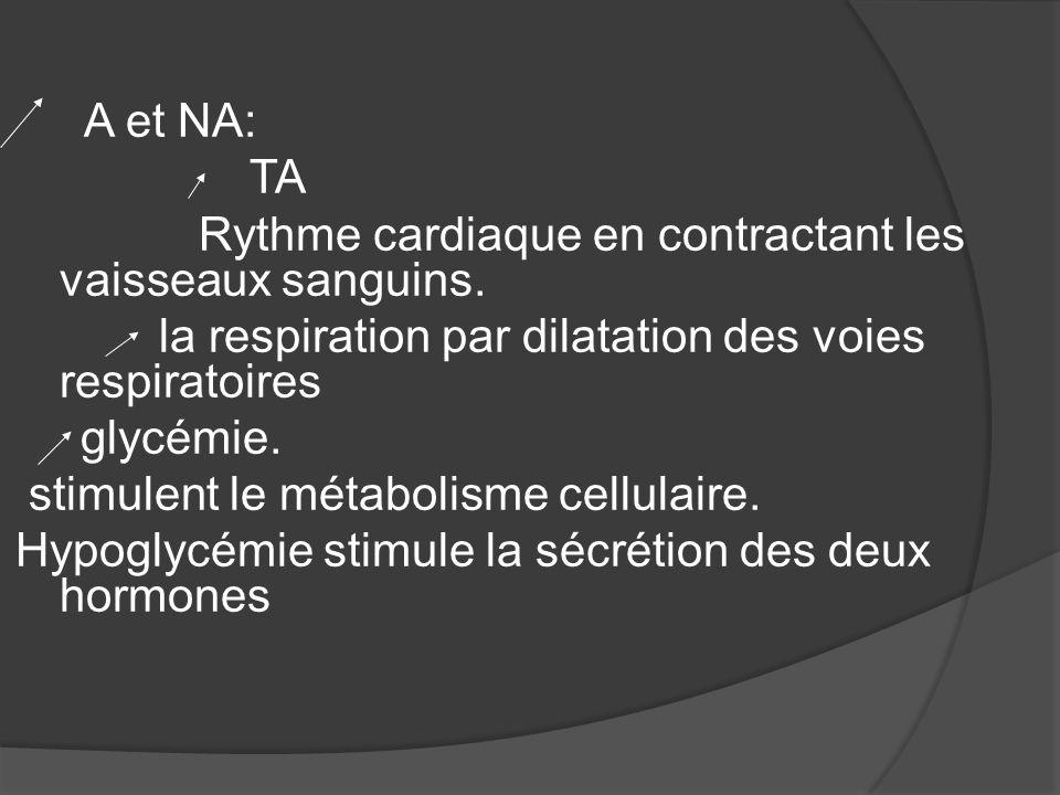 Rythme cardiaque en contractant les vaisseaux sanguins.