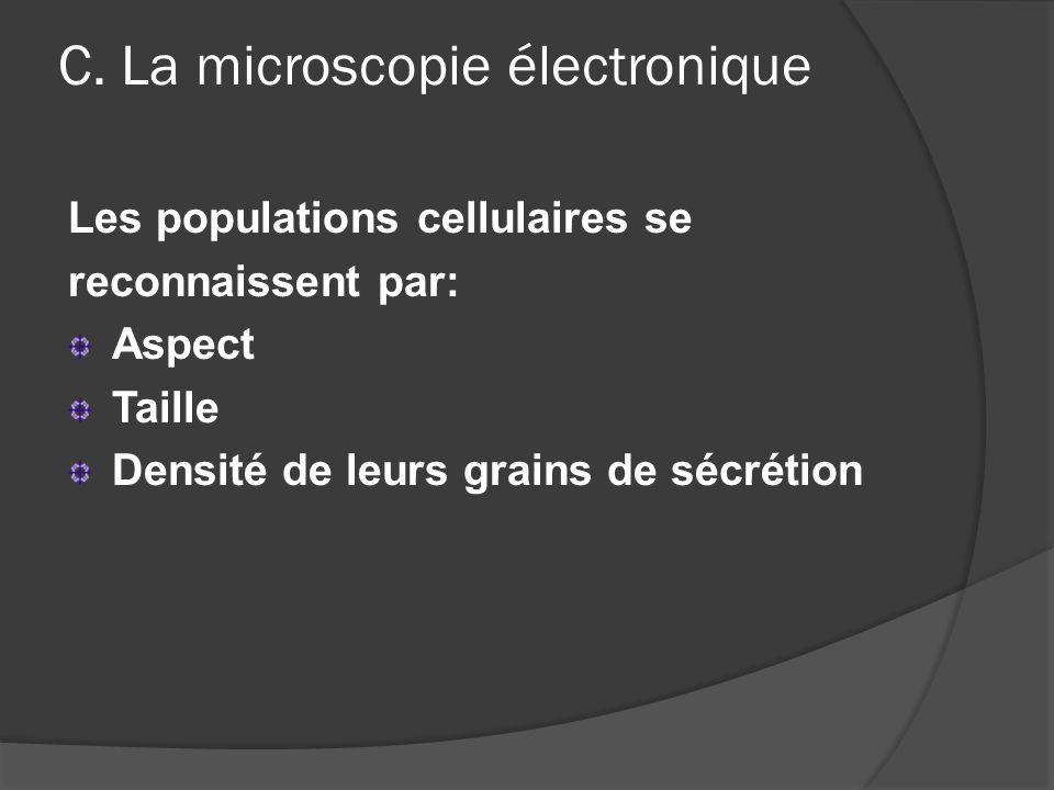 C. La microscopie électronique