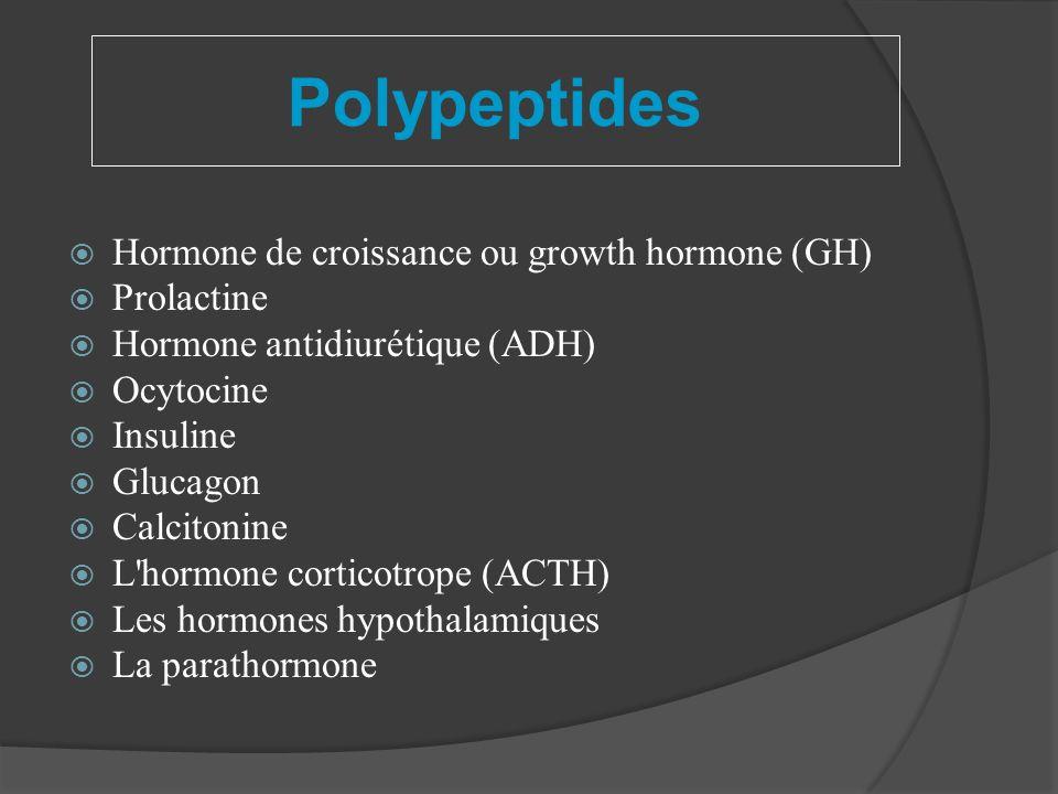 Polypeptides Hormone de croissance ou growth hormone (GH) Prolactine