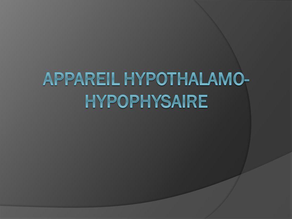 Appareil hypothalamo-hypophysaire