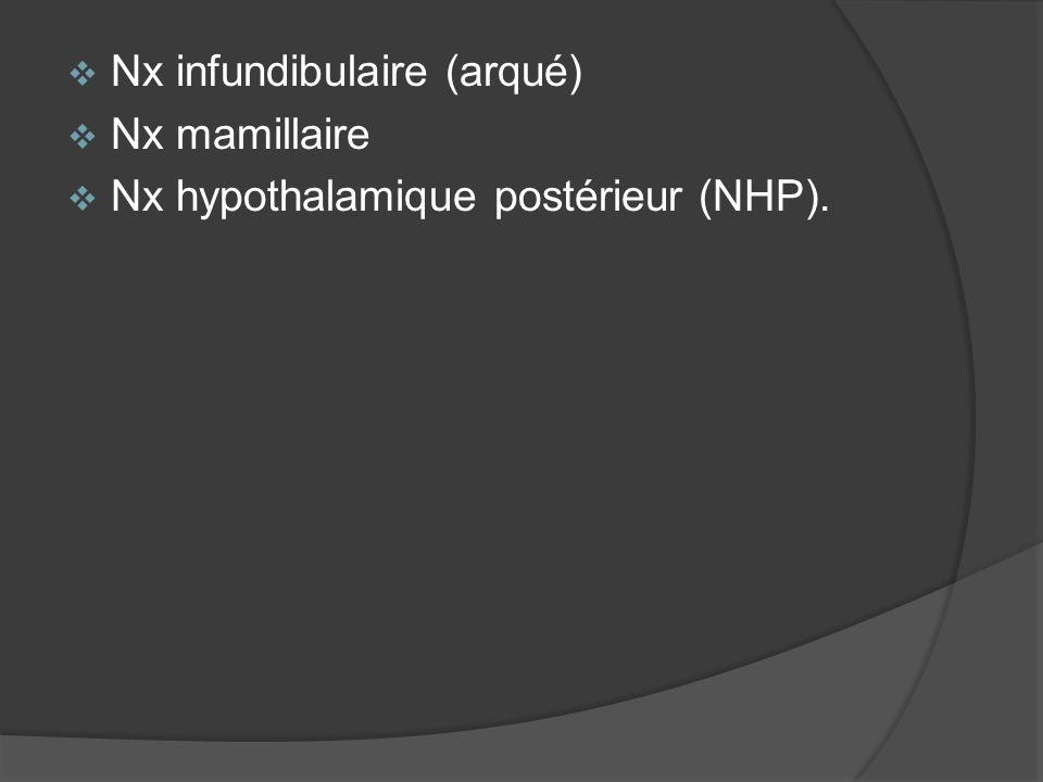 Nx infundibulaire (arqué)