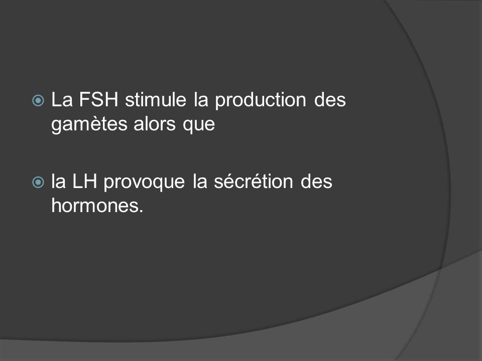 La FSH stimule la production des gamètes alors que