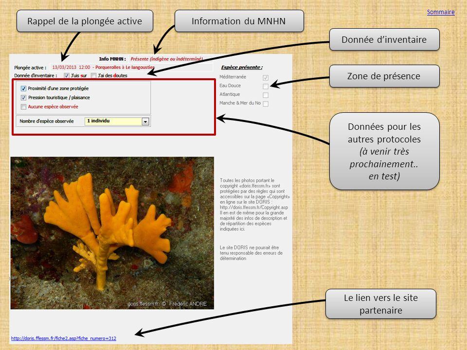 Rappel de la plongée active Information du MNHN