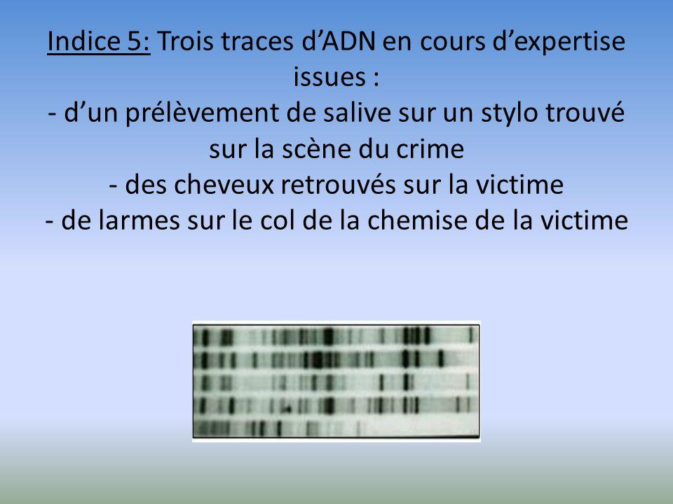 Indice 5: Trois traces d'ADN en cours d'expertise issues : - d'un prélèvement de salive sur un stylo trouvé sur la scène du crime - des cheveux retrouvés sur la victime - de larmes sur le col de la chemise de la victime