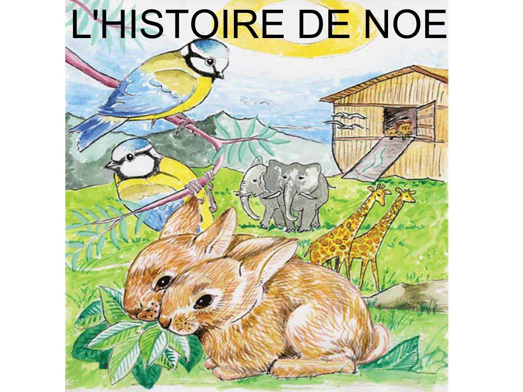 L HISTOIRE DE NOE