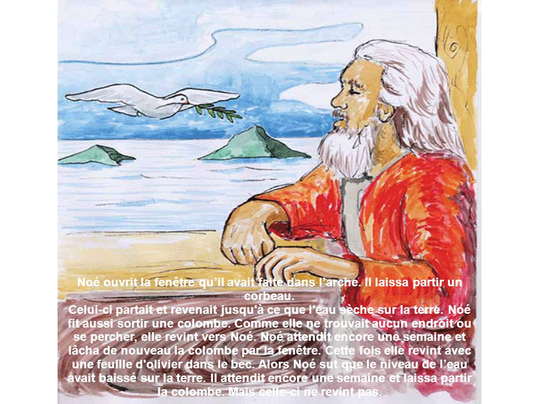 Noé ouvrit la fenêtre qu'il avait faite dans l'arche