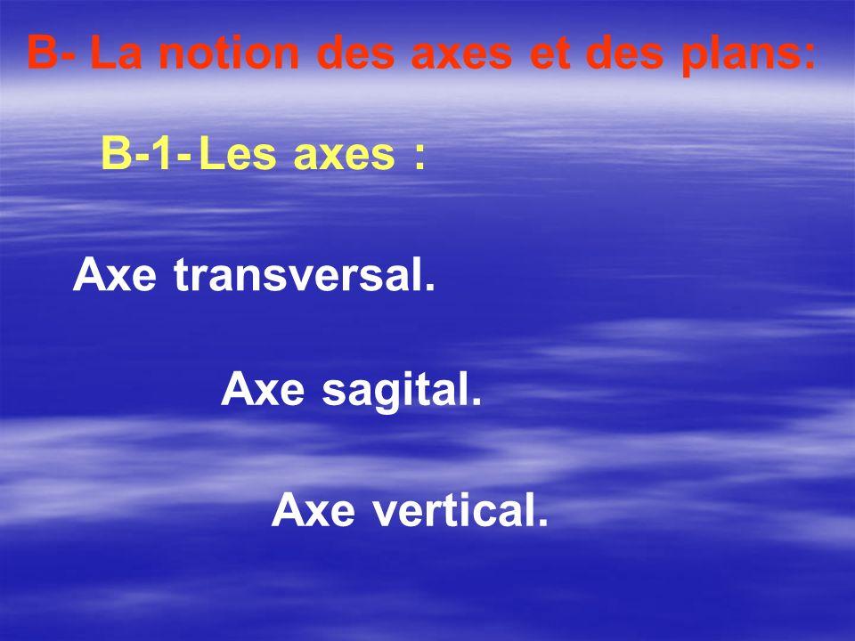 B- La notion des axes et des plans: