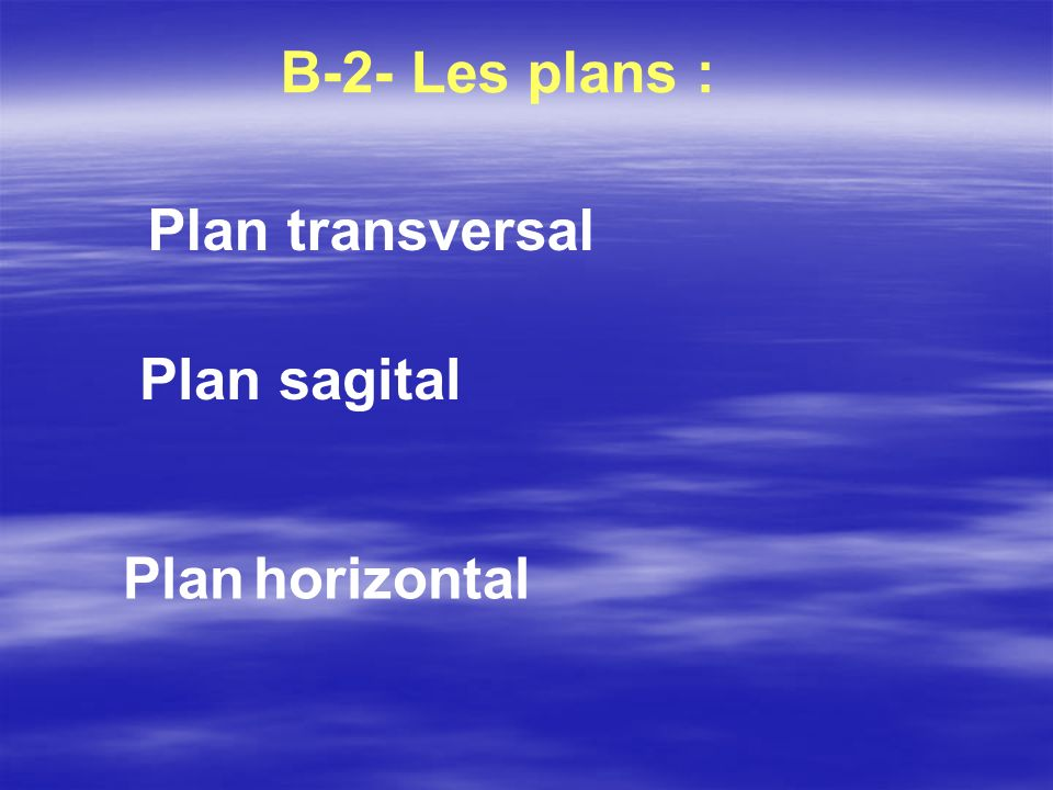 B-2- Les plans : Plan transversal Plan sagital Plan horizontal