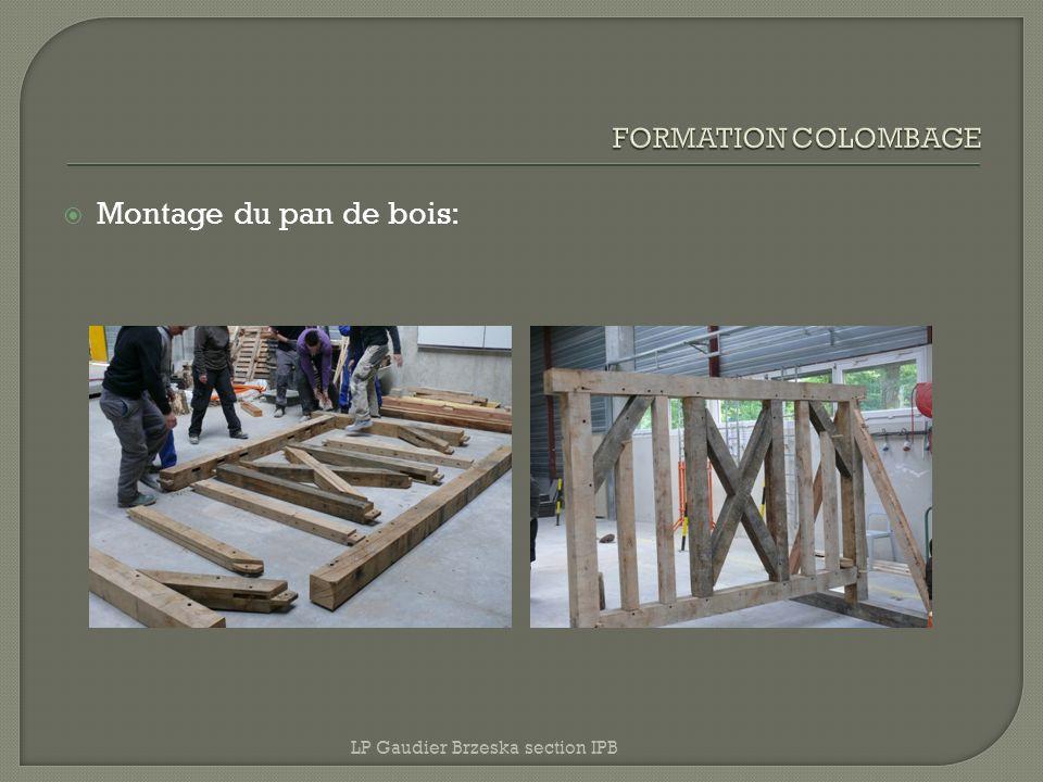 Montage du pan de bois: FORMATION COLOMBAGE