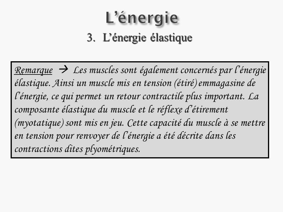 L'énergie L'énergie élastique