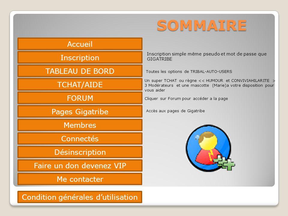 SOMMAIRE Accueil Inscription TABLEAU DE BORD TCHAT/AIDE FORUM